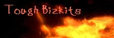 bizkits.jpg (12831 Byte)