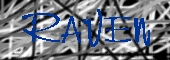 raven.jpg (12514 Byte)